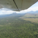 A view from the plane as we flew from Canaima to Ciudad Bolivar.