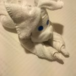 Towel NCL SUn Cruise